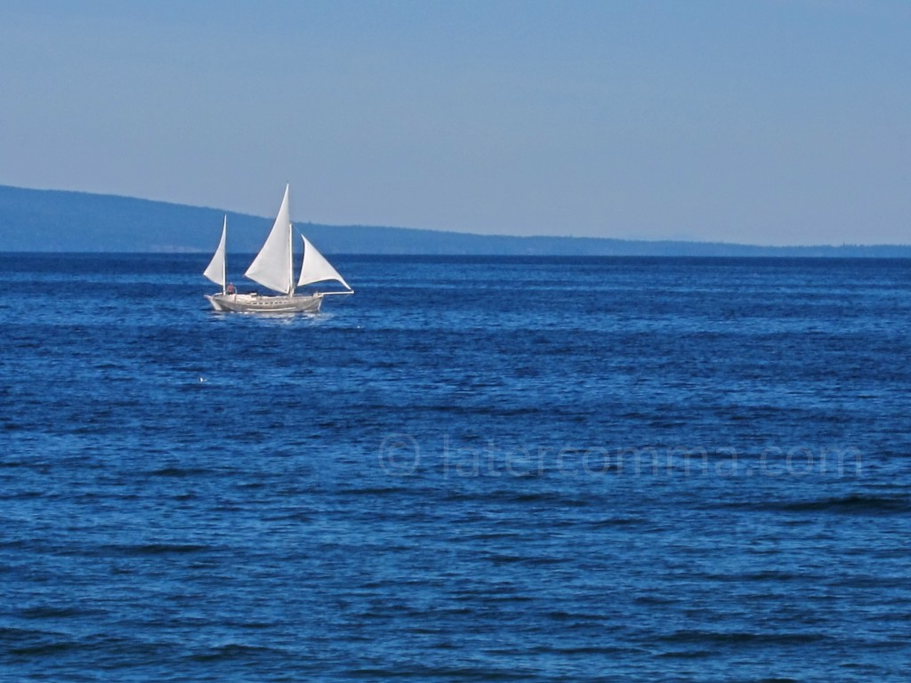 sailboat in the morning